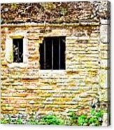 Derelict Building Acrylic Print by Tom Gowanlock