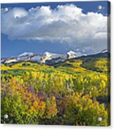 East Beckwith Mountain Flanked By Fall Acrylic Print by Tim Fitzharris