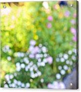 Flower Garden In Sunshine Acrylic Print by Elena Elisseeva