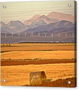 High Plains Of Alberta With Rocky Mountains In Distance Acrylic Print by Mark Duffy