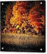Indiana Autumn Acrylic Print by Michael L Kimble