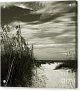 Let's Go To The Beach Acrylic Print by Susanne Van Hulst
