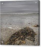 On The Beach Acrylic Print by Andy Astbury
