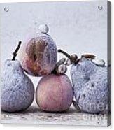 Pears And Apples Acrylic Print by Bernard Jaubert