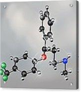 Prozac Antidepressant Molecule Acrylic Print by Miriam Maslo