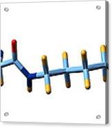 Pyrrolysine, Molecular Model Acrylic Print by Dr Mark J. Winter