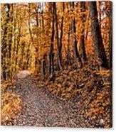 Ramble On Acrylic Print by Bill Cannon