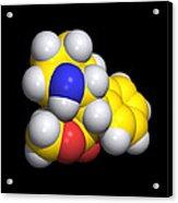 Ritalin Molecule Acrylic Print by Dr Tim Evans