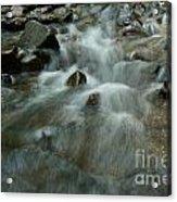 River Acrylic Print by Odon Czintos