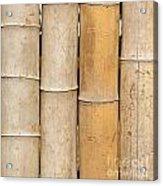 Straight Bamboo Poles Acrylic Print by Yali Shi