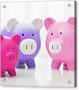 Studio Shot Of Piggy Banks Acrylic Print by Vstock LLC