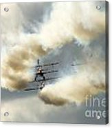 The Ballet Under The Skies Acrylic Print by Angel  Tarantella