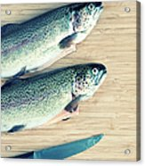 Trouts Acrylic Print by Carlo A