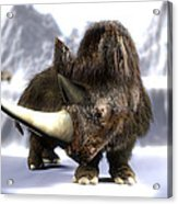 Woolly Rhinoceros Acrylic Print by Christian Darkin