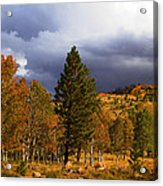 Rocky Mountain Fall Acrylic Print by Mark Smith