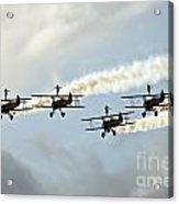 Wingwalkers Acrylic Print by Angel  Tarantella