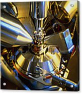 Scanning Electron Microscope Acrylic Print by Colin Cuthbert