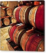 Wine Barrels Acrylic Print by Elena Elisseeva