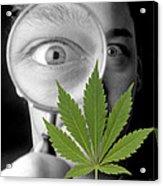 Cannabis Research Acrylic Print by Victor De Schwanberg