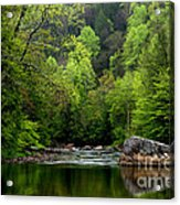 Williams River Scenic Backway Acrylic Print by Thomas R Fletcher