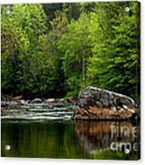 Williams River Scenic Backway Acrylic Print by Thomas R Fletcher
