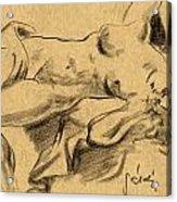 Nude Girl Acrylic Print by Odon Czintos