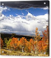 Rocky Mountain Fall Acrylic Print by Mark Smith