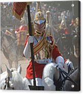 A British Life Guard Of The Household Acrylic Print by Andrew Chittock
