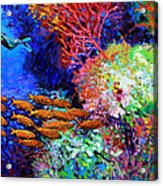 A Flash Of Life And Color Acrylic Print by John Lautermilch