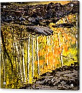 A Moment Of Reflection Acrylic Print by Mary Amerman