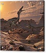 A Pack Of Carnivorous Velociraptors Acrylic Print by Mark Stevenson