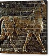 A Relief Depicts A Bull Acrylic Print by Lynn Abercrombie