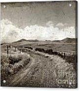 A Rural Path In Auvergne. France Acrylic Print by Bernard Jaubert