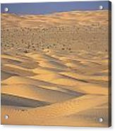 A Sea Of Dunes In The Sahara Desert Acrylic Print by Stephen Sharnoff