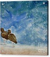 A Walk On The Beach Acrylic Print by Estephy Sabin Figueroa