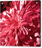 Abstract Flowers Acrylic Print by Sumit Mehndiratta