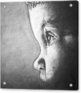 Always Watching Acrylic Print by Seth Deter