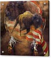 American Buffalo Acrylic Print by Carol Cavalaris