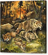 Animals United In Terror As They Flee From A Forest Fire Acrylic Print by G W Backhouse