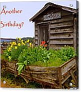 Another Birthday Antiques Acrylic Print by Cindy Wright