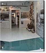 Antiques In Museum Room Acrylic Print by Jaak Nilson