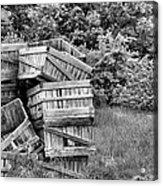 Apple Crate Bw Acrylic Print by JC Findley