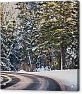 Around The Bend Acrylic Print by Lisa  Spencer