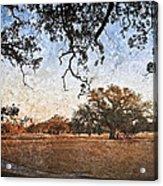 Audubon Golf Course Acrylic Print by Ray Devlin