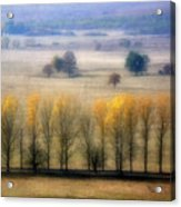 Autumn At Blumenthal Acrylic Print by Old&timer Imagery