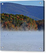 Autumn Backdrop Acrylic Print by Douglas Barnard