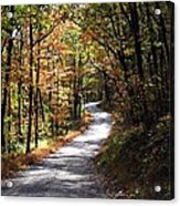 Autumn Country Lane Acrylic Print by David Dehner