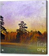 Autumn Morning Mist Acrylic Print by Judi Bagwell