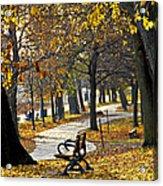 Autumn Park In Toronto Acrylic Print by Elena Elisseeva