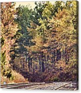 Autumn Railroad Acrylic Print by Douglas Barnard